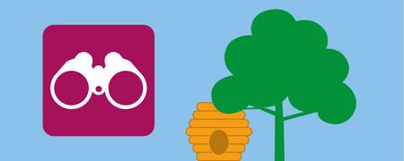 Symbole: Fernglas und Baum  - Link auf: Forschen
