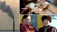 - Link auf Detailseite zu: Mongolei
