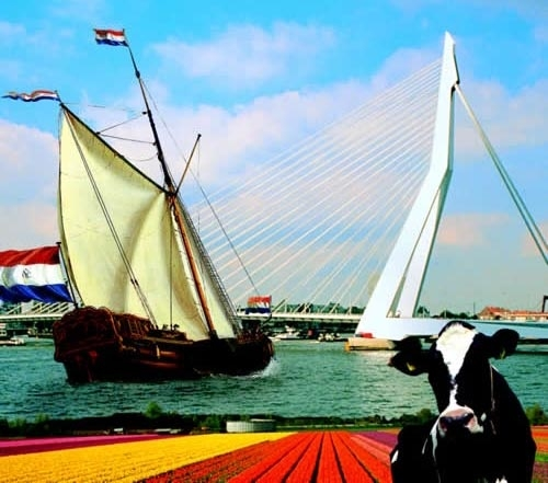 Zeichnung Segelboot, Kuh, Tulpenfeld und Flagge der Niederlande.